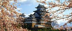 Tour Du lịch Nhật Bản 5 Ngày: Yamanashi -  Hakone - Tokyo