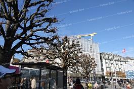 Khám phá thành phố Lucerne, Thụy Sĩ