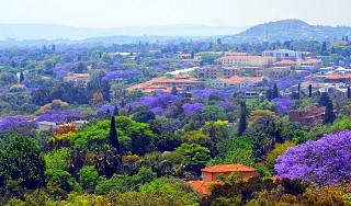 Tour Du lịch Nam Phi Mùa Phượng Tím Siêu Khuyến Mãi