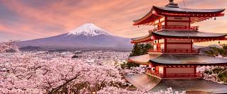 Tour Du lịch Nhật Bản 4 Ngày 3 Đêm: Tokyo - Hakone - Phú Sĩ