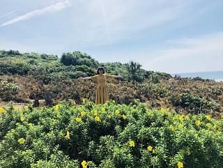 Tour Du lịch Phú Yên 4 Ngày Về Xứ Hoa Vàng Cỏ Xanh 2020